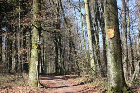 Lauschtour Sagenhaftes rund um den Goldberg (Foto: VG Höchstädt)