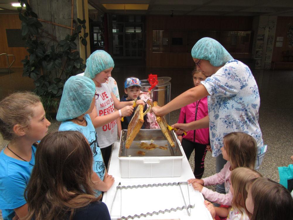 Ferienprogramm Rettet die Bienen (Foto: Blum Alfred )