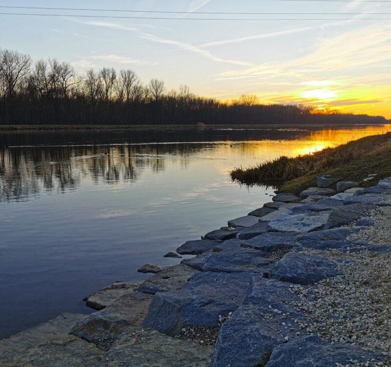Naturnaher Uferzugang an der Donau (Foto: Manuela Lutmayr, VG Höchstädt)