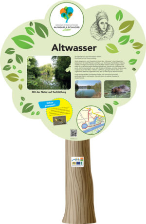 Infopoint Altwasser