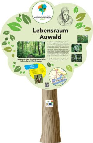 Infopoint Auwald